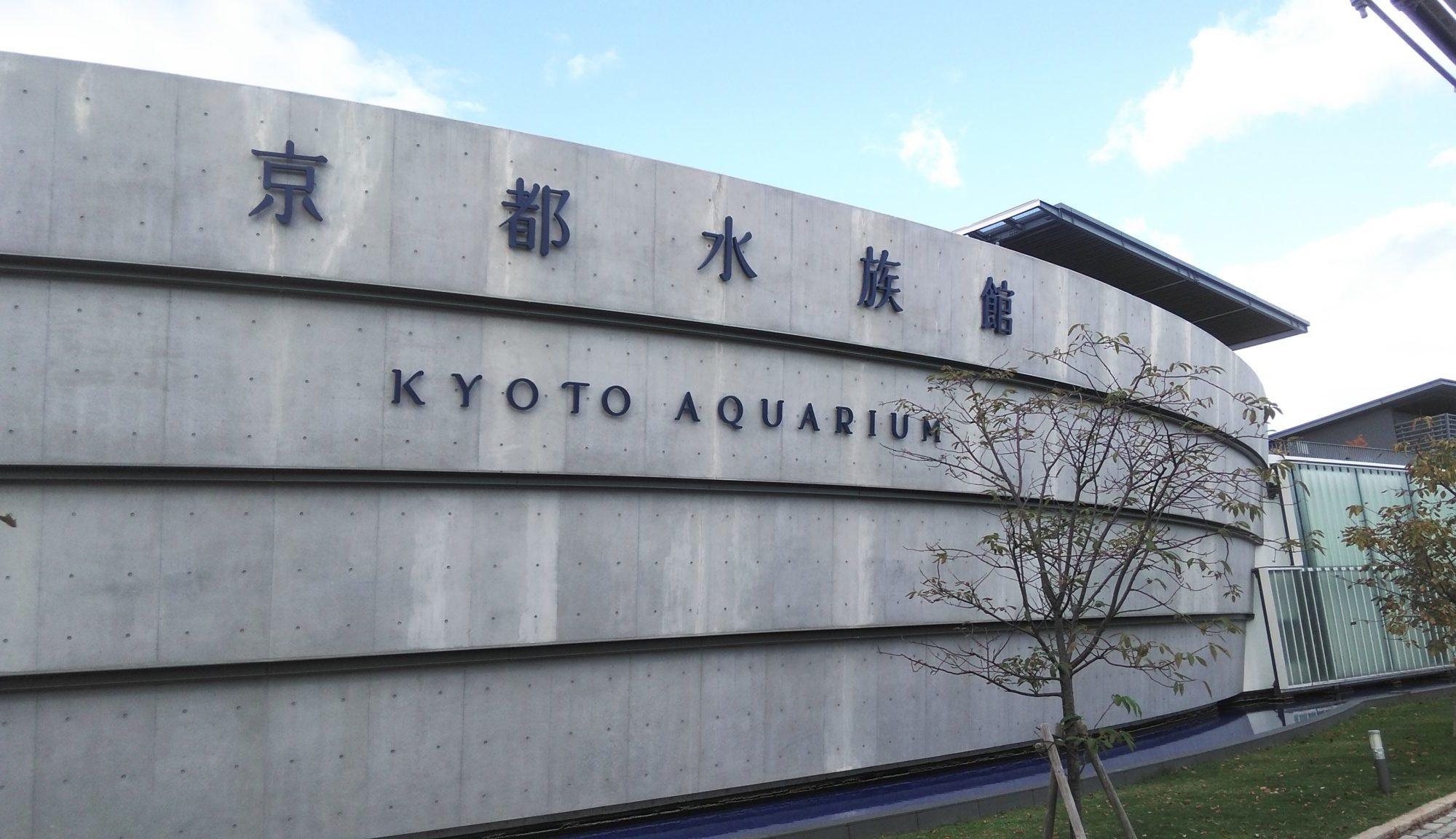 家族と京都水族館🐬