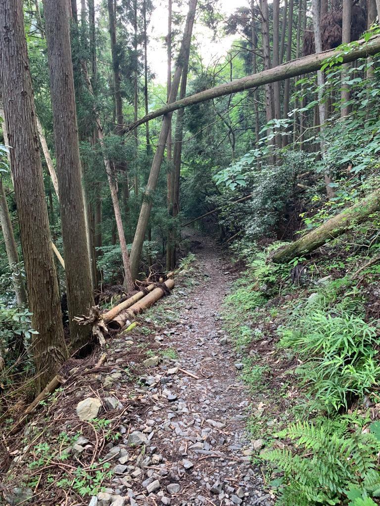京都1周トレイル