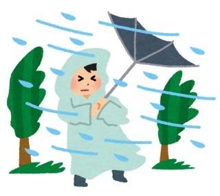本日の京都 台風状況